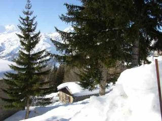 LES ARCS - OLD MOUNTAIN CHALET/SPLIT-LEVEL 4/6 PERS 80 M2 - 5 ROOMS