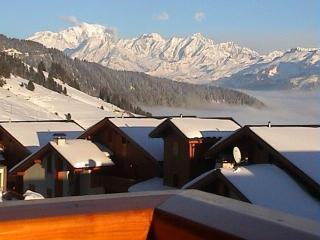 LOVELY APPARTMENT IN A NEW LUXURY CHALET (MGM). SOUTH EXPOSED. MAGNIFICENT MONT-BLANC VIEW. DIRECT ACCES TO SKI PISTES.