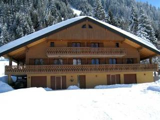 l'Oree du lac: 560m2 chalet for 37 persons
