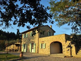 Villa Palazina - Restored farmhouse with pool