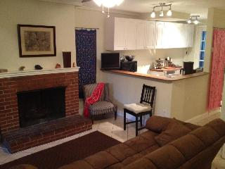 1-br furnished apt (Eastern Market)