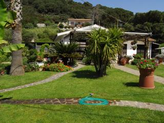 Elba Island: wonderful villa a few steps from the sandy siaggia, with flower garden.