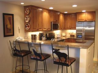 Exec 2 BR at The Village--Granite/Stainless/Stereo