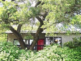 Kaleido House-2/1 by Zilker Park, 2 mi to downtown