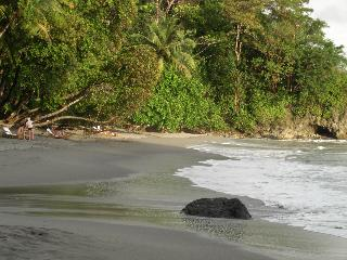 Manuel Antonio Luxury Condo