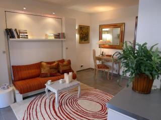 Gorgeous Studio apartment in Beaulieu sur mer
