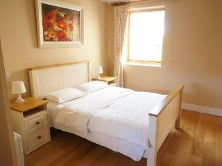 Dublin City Centre One bedroom Apartments -sleep 4