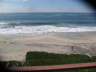 Perfect 1 BR & 1 BA House in Carlsbad (3009 #C  Ocean St.)