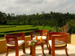 Relaxing,private,luxurious 4bedrooms villa inUbud