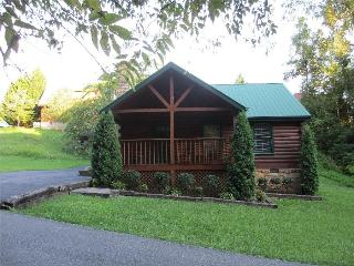 Smokies Cabin-Near Convention Center!  Book Today!