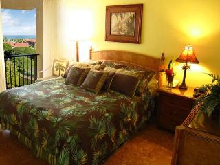 HUGE PROMO!!! Jan 6-15 Only $250/nt!  Inquire Now!