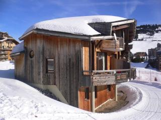 Deluxe ski-in ski-out chalet for 6