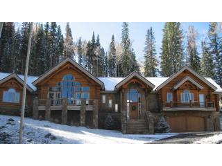 Telluride 5 BR + Loft Luxury Ski-in &amp; Out Log Home