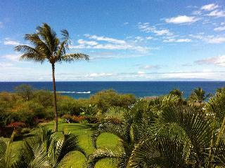 Maui Kamaole Awesome Ocean View Condo 2bed/2bath