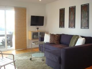 Newport Beach Contemporary 1 Bedroom