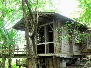 3 bedroom wooden treehouse overlooking Scarboro