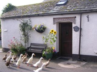 The Nest for 2 in village by farm,stream,ducks