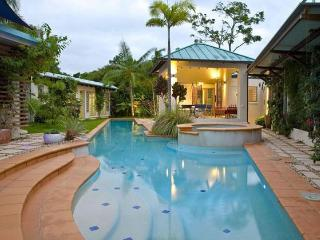 25 metre Heated / Cooled Pool with large Spa in Private Tropical Garden
