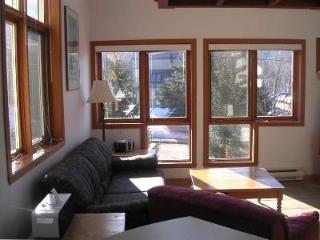BEST LOCATION   IN TREMBLANT PETS WELCOME