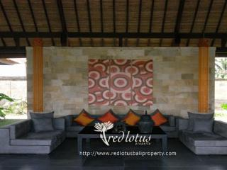 Rumah Lotus Ubud relaxing,private,2 bedrooms villa