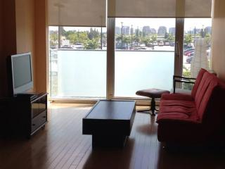 $110/d_new 2bdr apartment (8080cambie rd.Richmond)