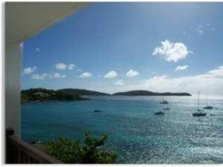 St.Thomas USVI, East End, Cowpet Bay East Villa