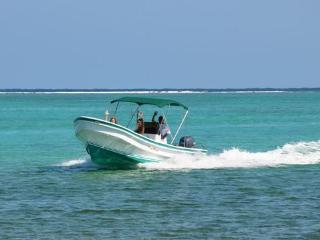Unlimited fishing & Snorkeling!  Boat & Captain included!