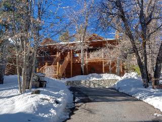 Modern 3 bedroom cabin. Walk to Bear Mountain.