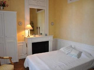 Spacious 1 Bedroom near Musee d&#39;Orsay, 7th arr.
