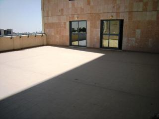 SPOTLESS 1300 ft2 + 1400 ft2 terrace ! CITY CENTER