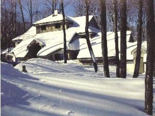 Woods Resort & Spa Village 8  - Two bedrooms plus loft Two bathrooms Shuttle to/from Slopes, Health Club Privileges