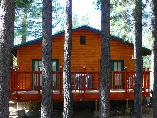 Quiet Cabin, Mountain Views, Close to Everything