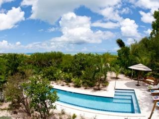Villa Camilla: Grace Bay Beachfront on 6 Acres