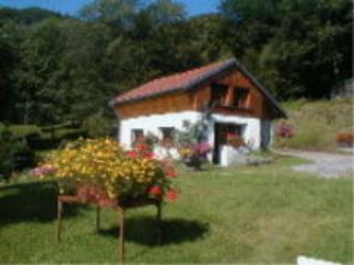 NICE LITTLE CHALET IN NATURAL PARK FROM VOSGIANS MOUTAINS