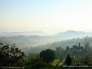 Olive Farm Apartment Lucca