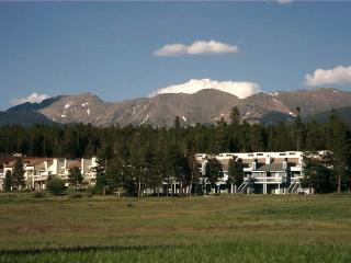 Meadow Ridge Court 29 Unit 3