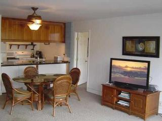 Large 2 Bd/2 Bath condo steps from the beach