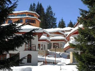 Chalet Village in Natural 'Narnia' pine forest