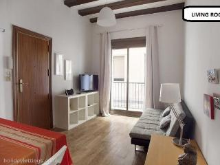 central barcelona apartment