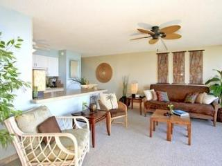 Stunning 2 BR 2Baths Condo, great views -IS614