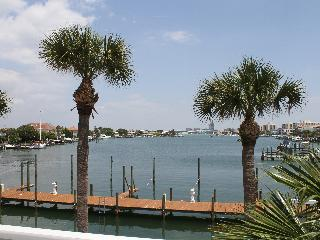Dockside 201 Bayfront Condo, Watch the Dolphins
