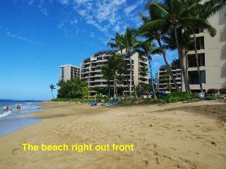 Maui Condo on the beach sleeps 8 people