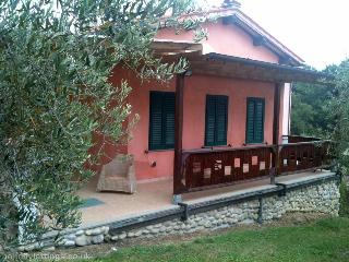 Olive Farm House Lucca