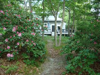 Private waterfront setting, kayaks, walk to beach