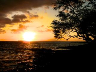 Your Maui Adventure Awaits !!!