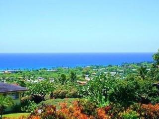 House with Panoramic Ocean View and Close to Town!