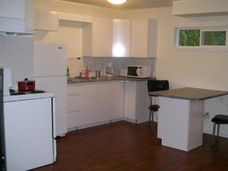 Affordable Studio in Maple Ridge, BC