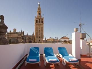 Towers Duplex Terrace Seville next to Giralda 3 pax