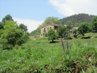 A unique home in a privileged area of ??Catalan Pyrenees.