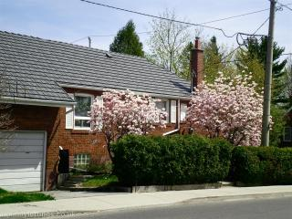 Toronto / East York Bungalow